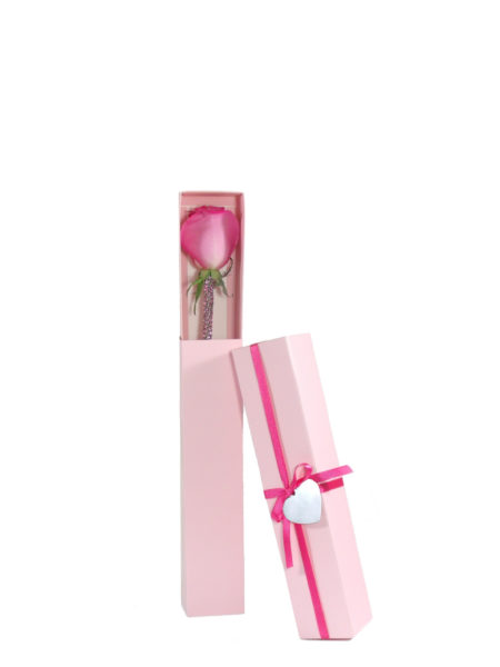You're the One Hot Pink Rose-Array of Gifts Single Rose Valentine Day Flowers Houston Pearland Delivery