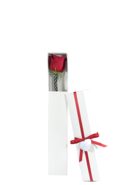 You're the One Red Rose-Array of Gifts Single Rose Valentine Day Flowers Houston Pearland